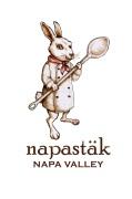 Napastak-Logo